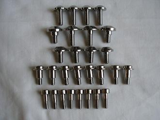 Yamaha Fazer titanium engine casing screws