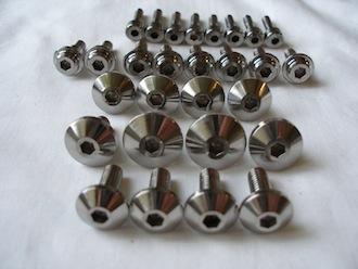Yamaha Fazer titanium engine casing screw heads