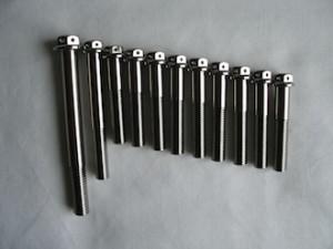 Titanium M8 race spec bolts