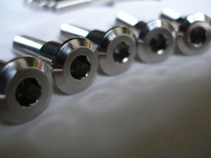 Titanium disc bolt heads