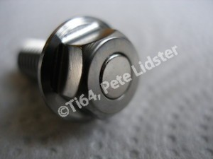 Magnetised titanium disc bolt