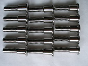 Titanium disc bolts